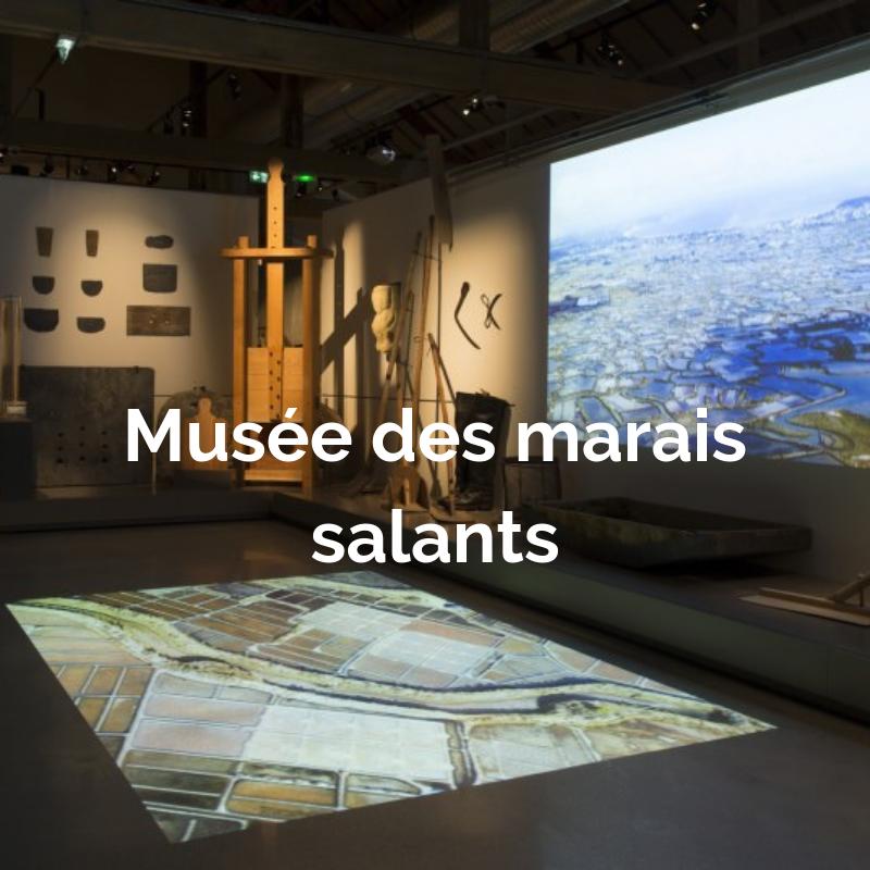 Projection d'images des marais salants