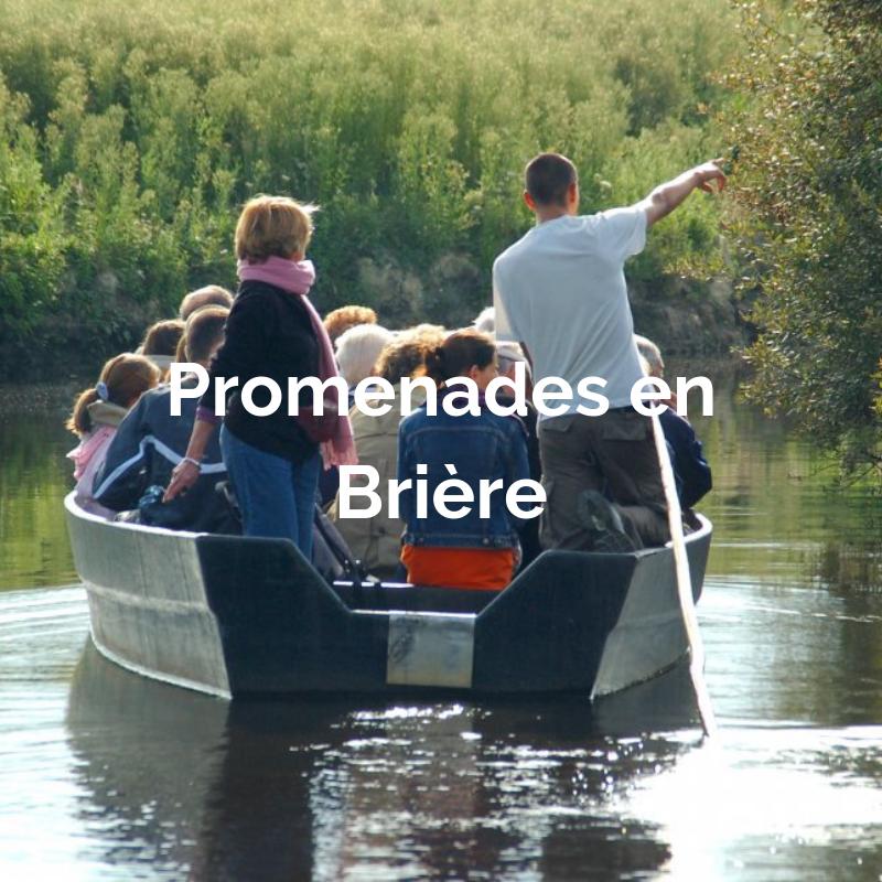 Touristes assis sur une barque avec un guide