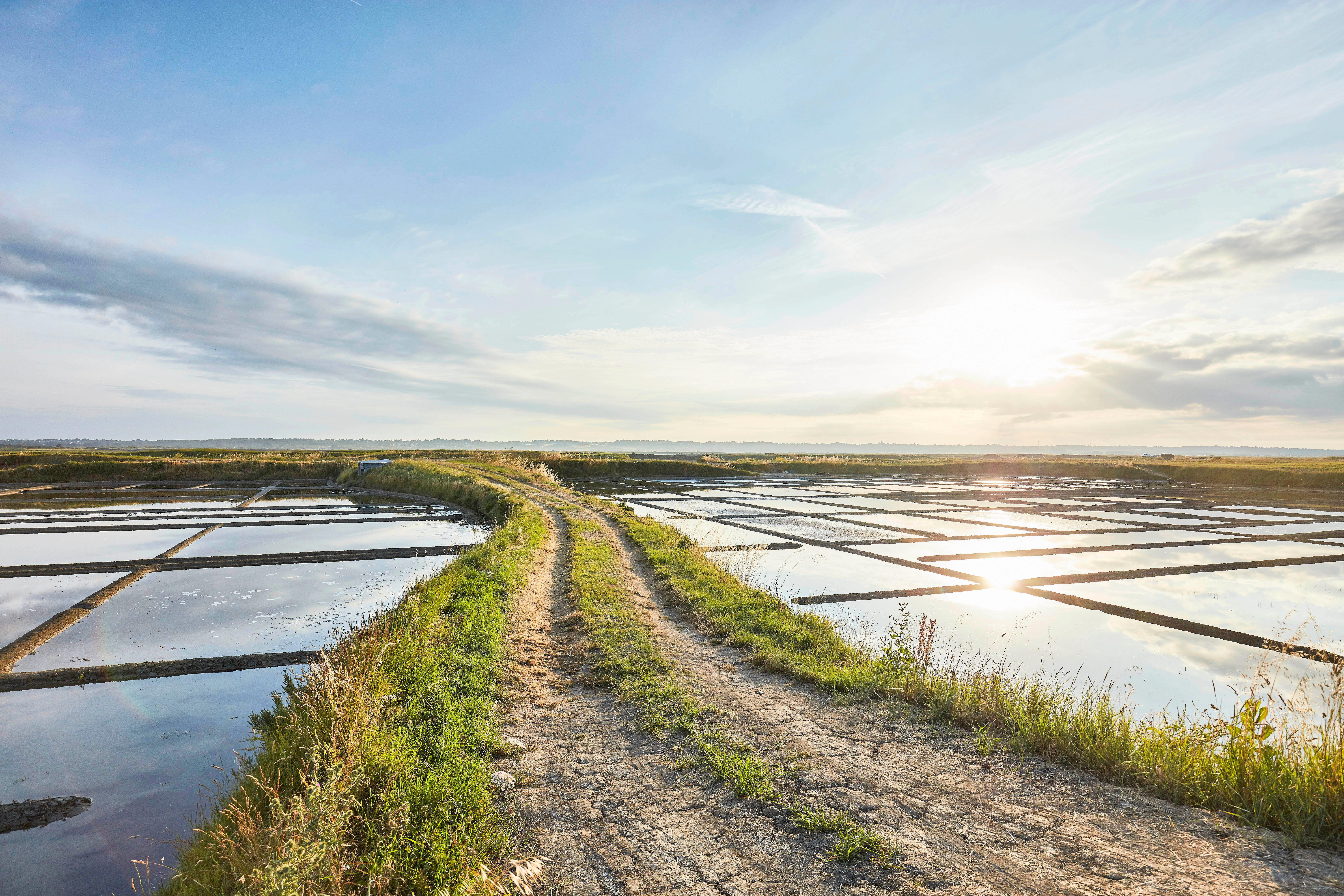 Marais salants de Guérande en Loire-Atlantique