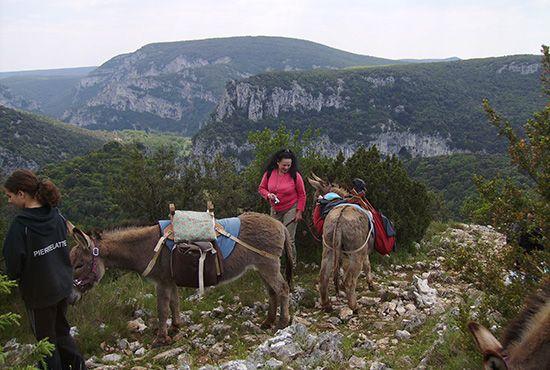 Séjours balade avec un âne, poney, roulotte ou calèche en Ardèche (Gîtes de France Ardèche)