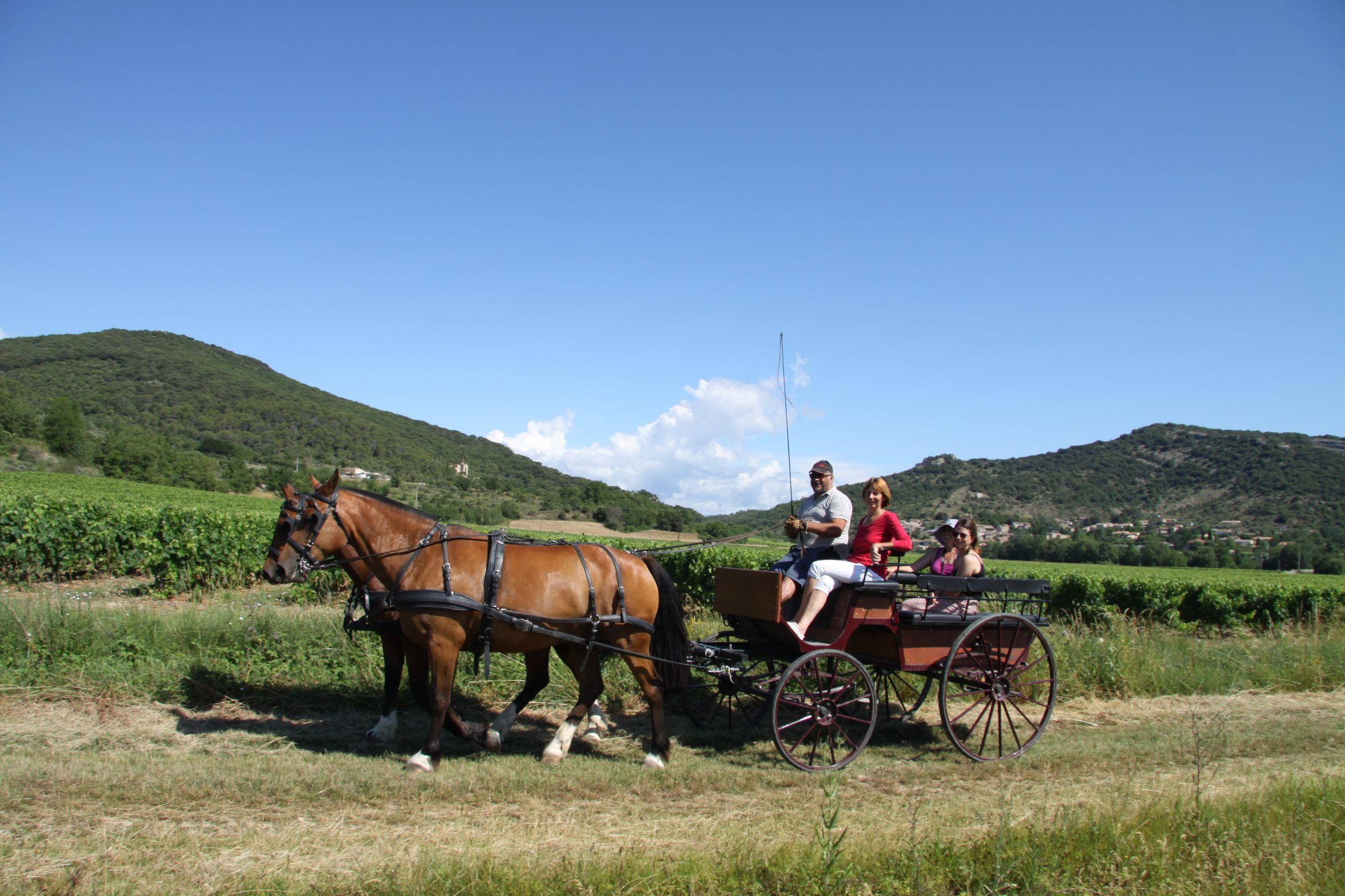 calèche gîtes de france Ardèche - gîte la Bonnefontaine