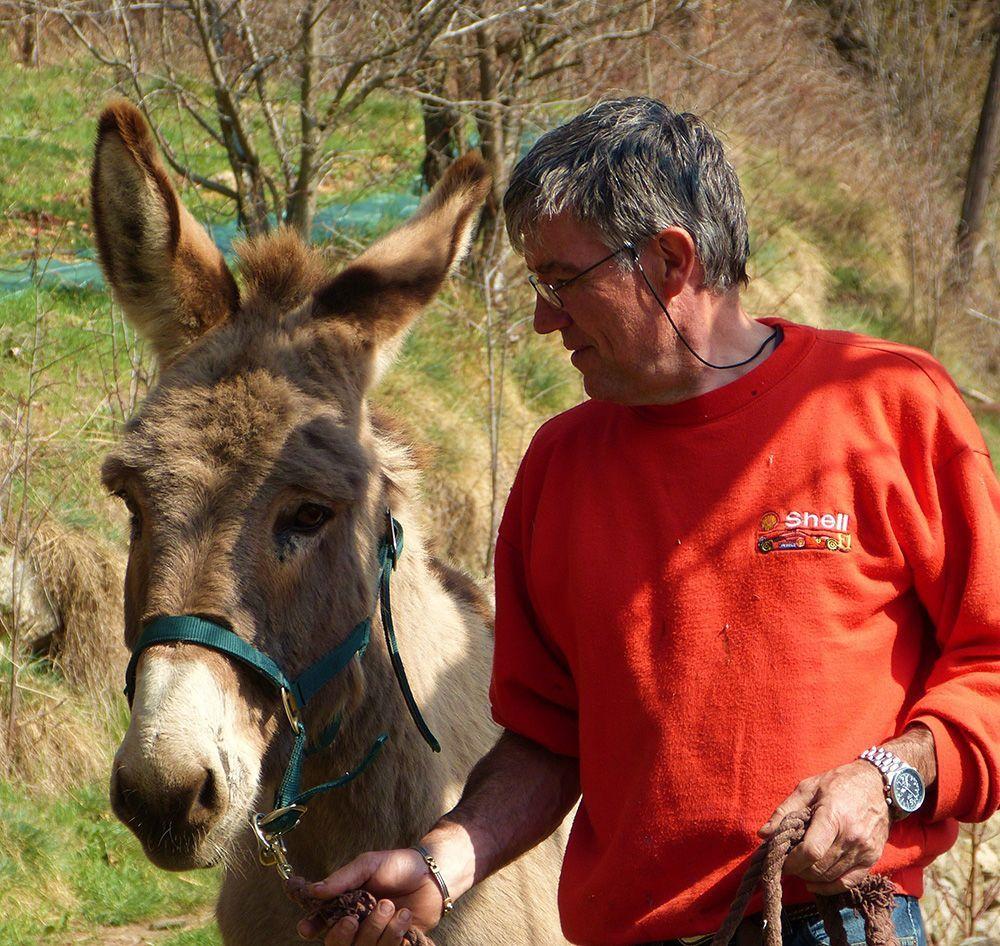 Séjour balade en âne à Montselgues - locations gîtes Ardèche