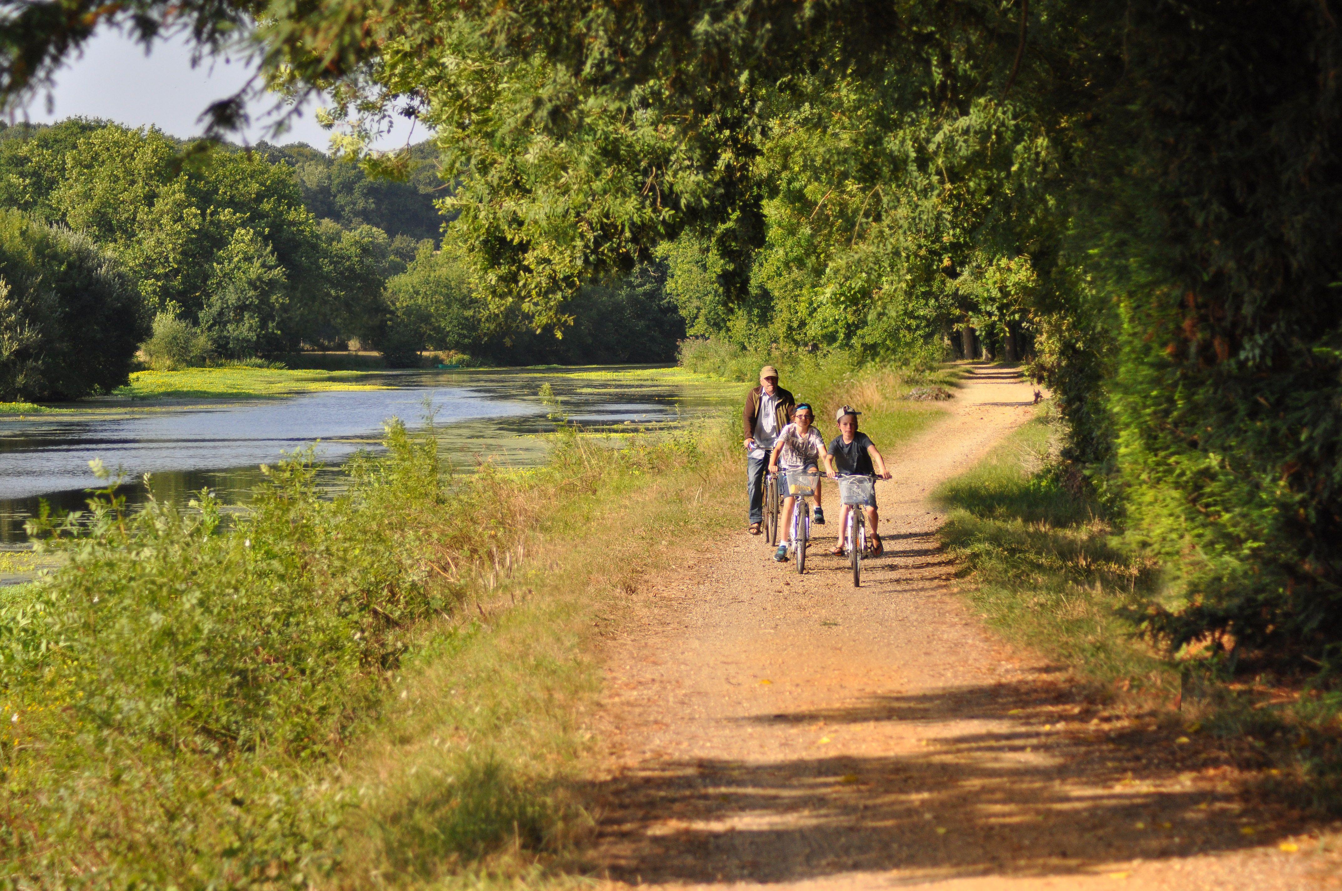 Touristes à vélo sur les bords de loire, en Loire-Atlantique