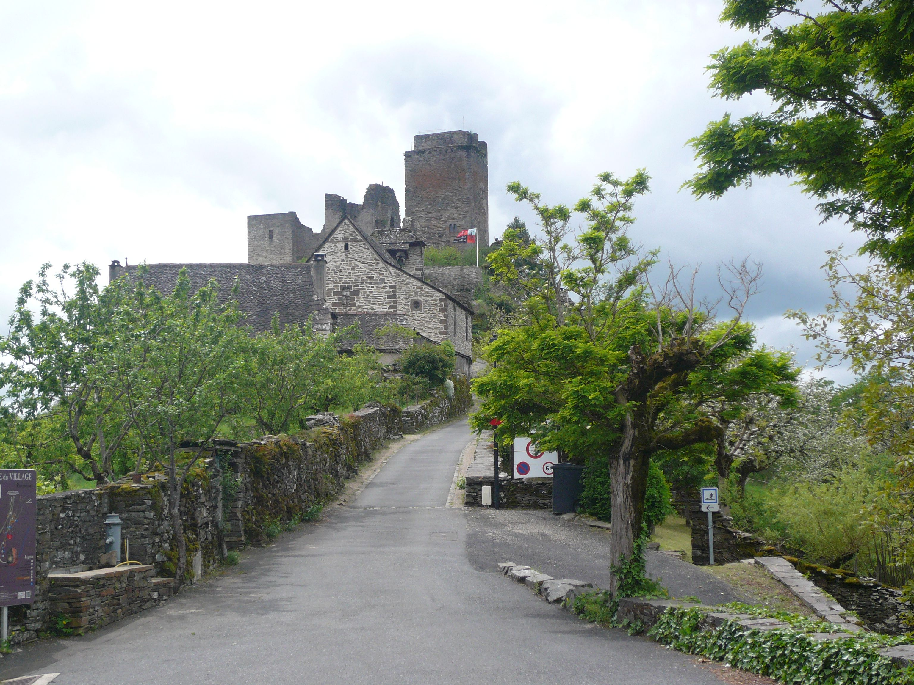 Château de Vallon (12ème siècle)