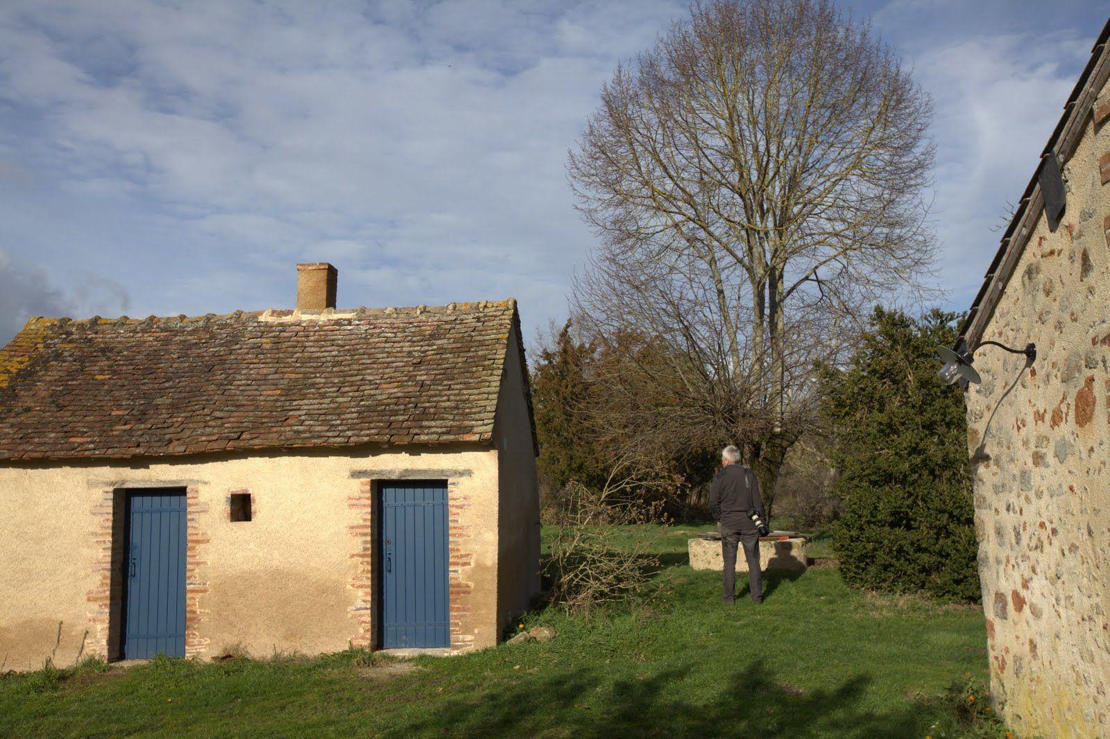 des petits toits pour ranger le bois, le barbecue, devant le puits et le grand tilleul