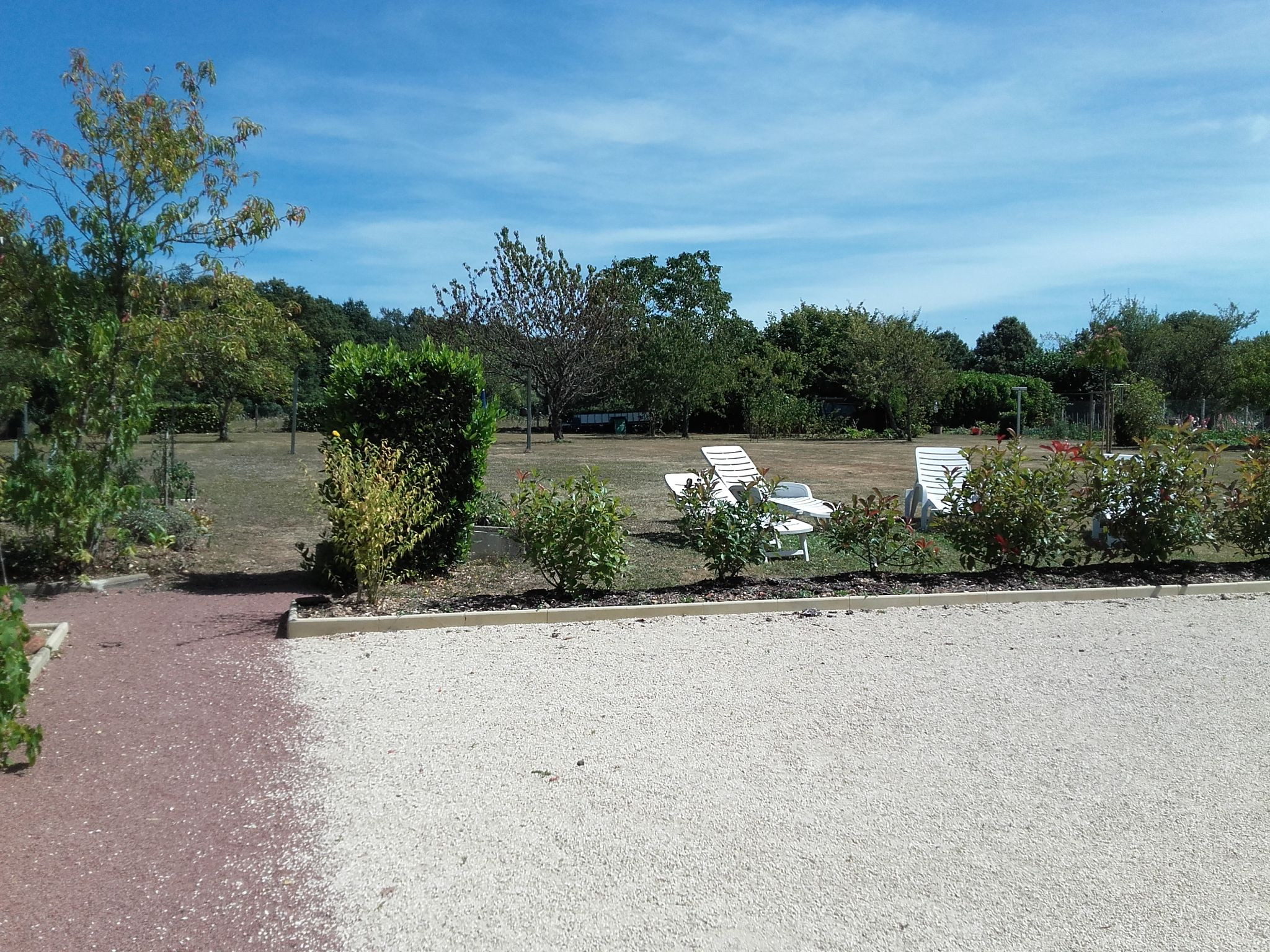 jardin  et cour arrière