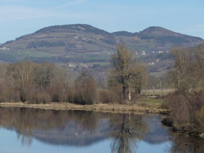 """Et... à proximité"""" de la Loire sauvage"""