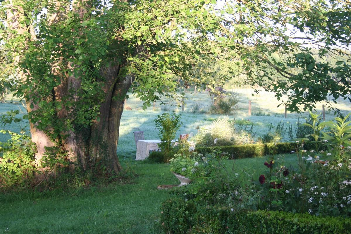 Table dressée dans le pré. 51G416 - Sous l'Orme en Argonne - Les Charmontois - Gîtes de France Marne