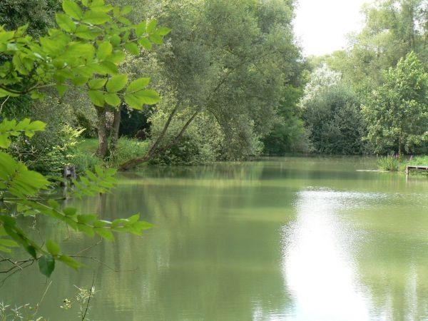 l'étang privé de la propriété