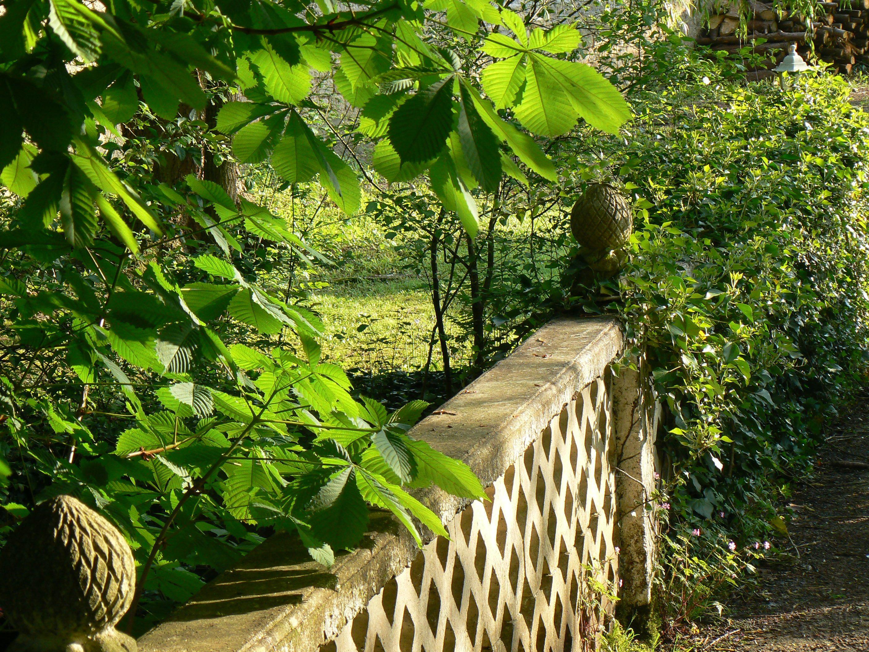 le pont pour aller à l'étang