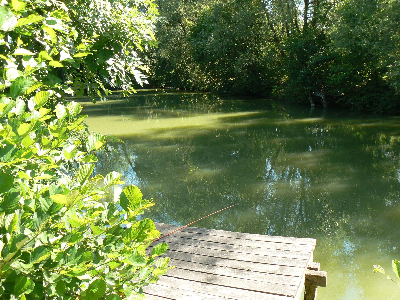 sur le ponton de l'étang privé