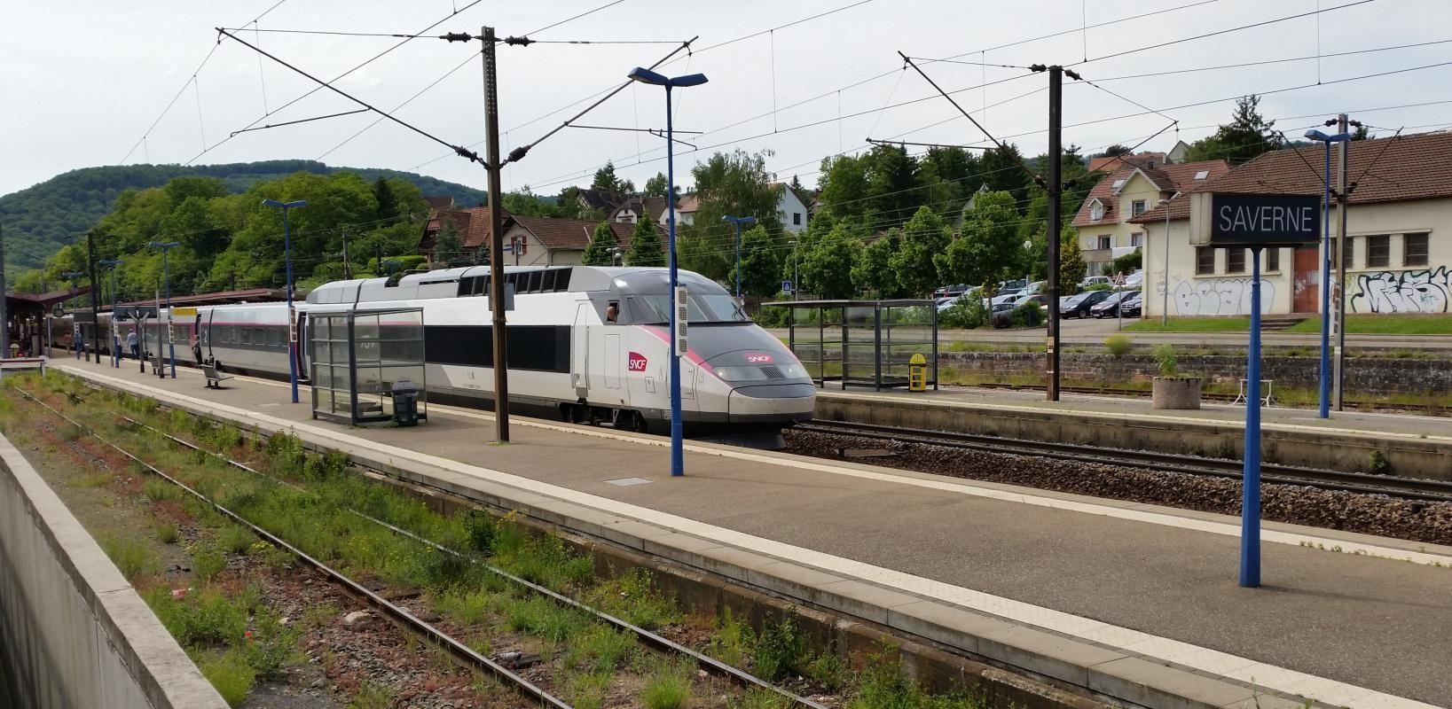 Gare TGV a 1 km du gîte : Strasbourg en train direct en 25 minutes, Paris en TGV à environ 2h, lignes Metz-Nancy, Bâle...