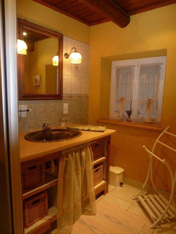 Salle de bain: douche + vasque + sèche serviettes