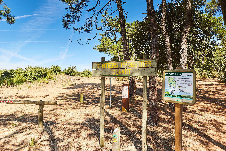 Sentiers pédestres ou pistes cyclables en bord de mer