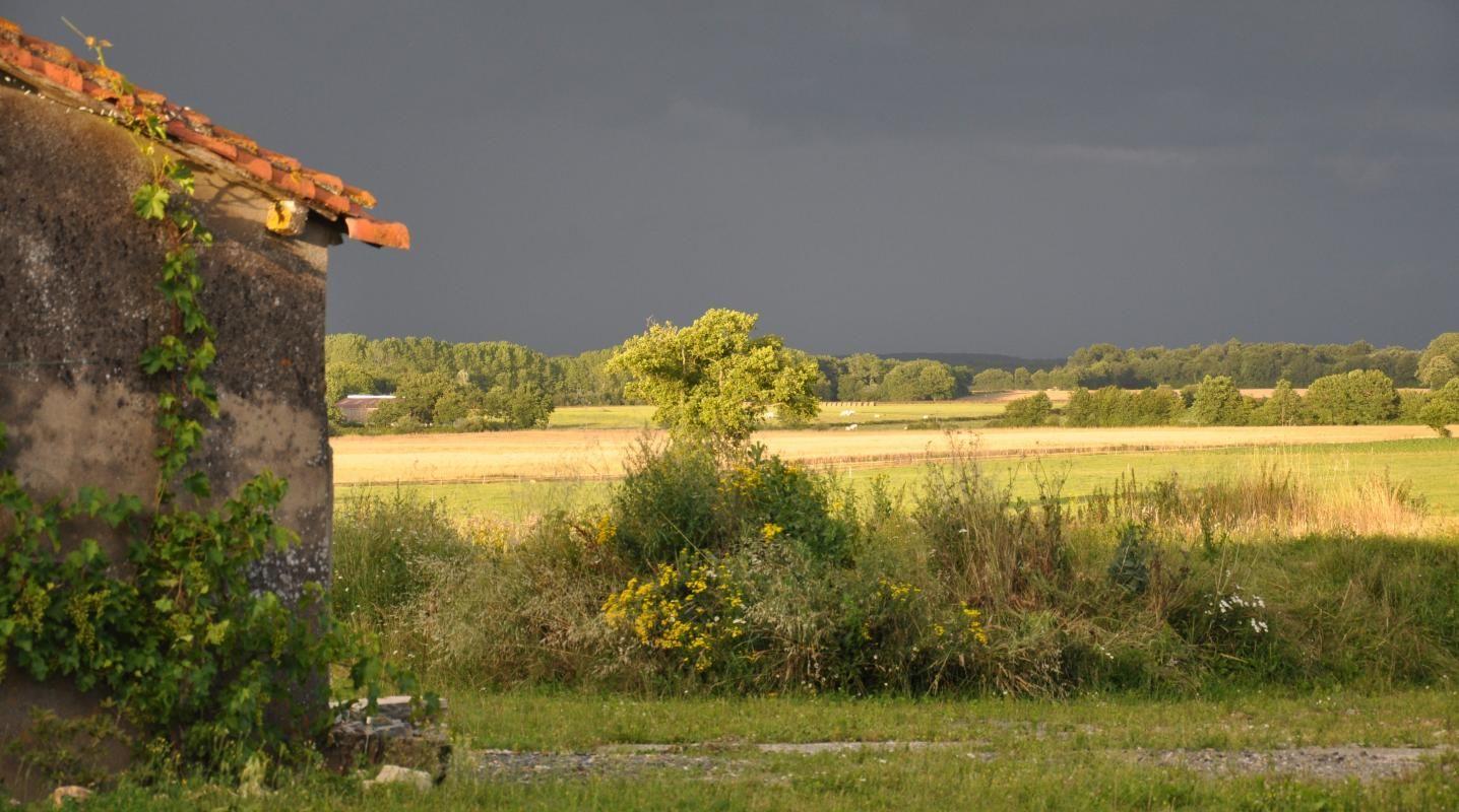 Vue sur la campagne depuis la propriété