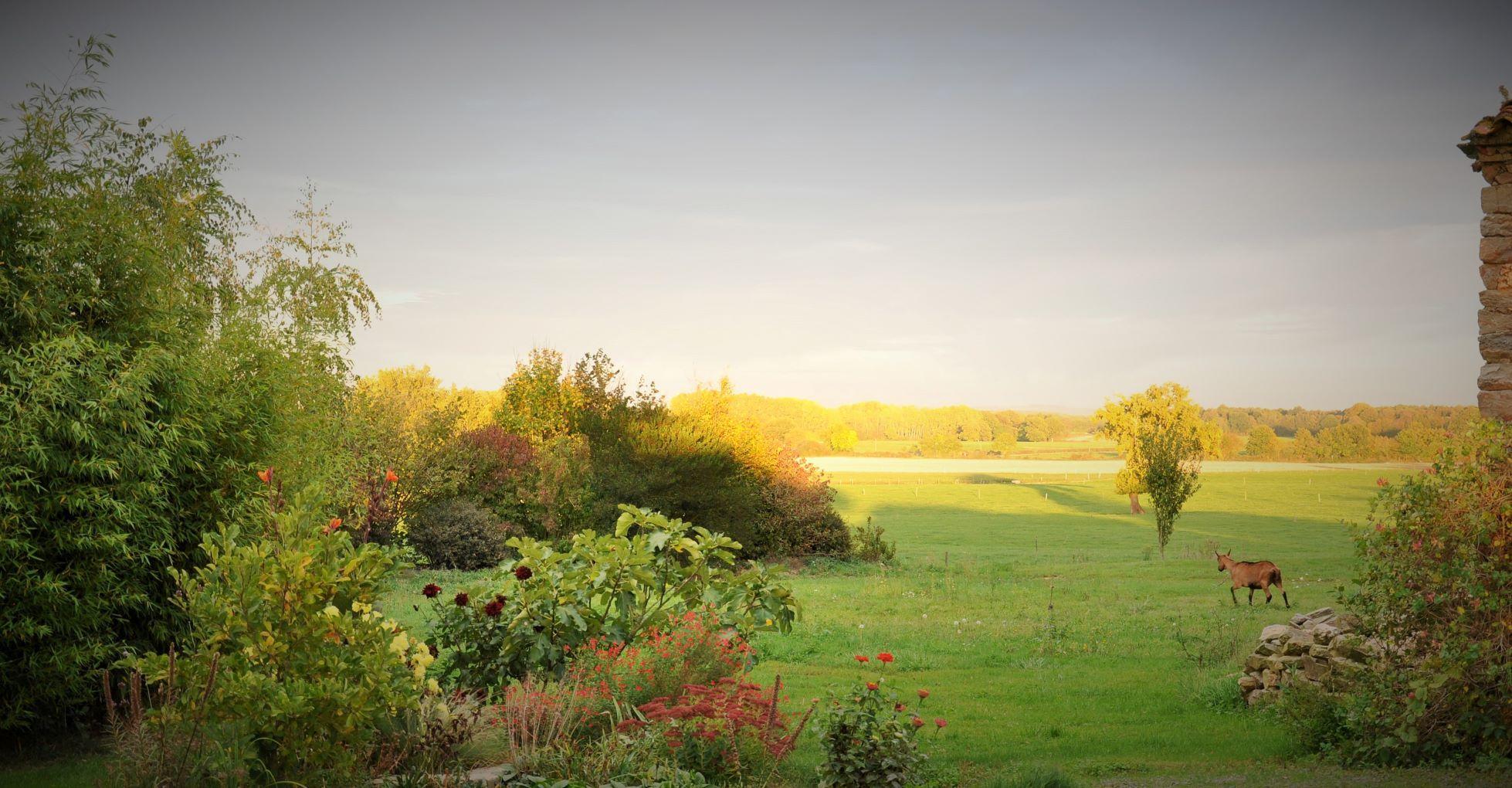 Vue depuis jardin privatif