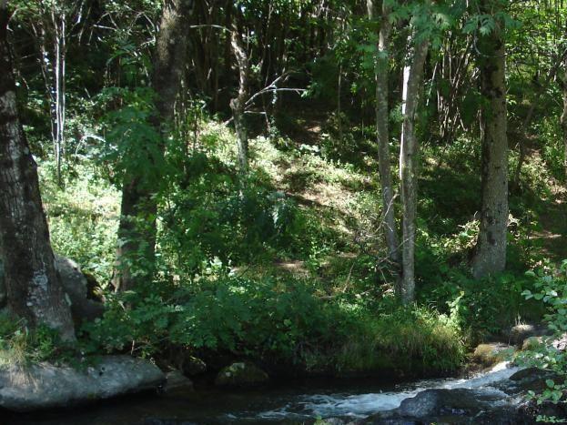 cascades et jacuzzis naturels au Moulin