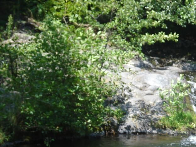 baignade au pied des cascades
