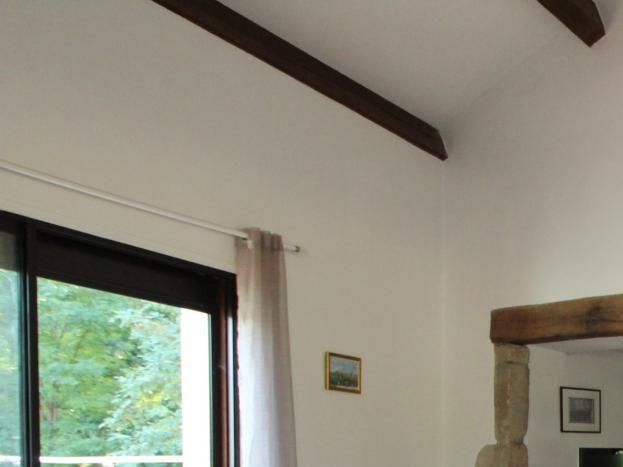Salon cheminée insert