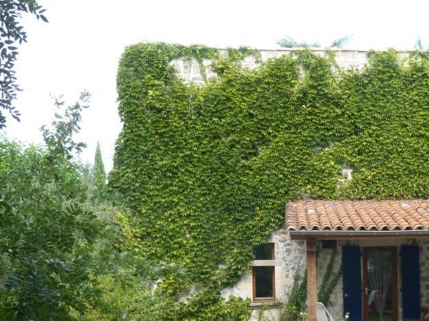 Espace extérieur avec terrasse