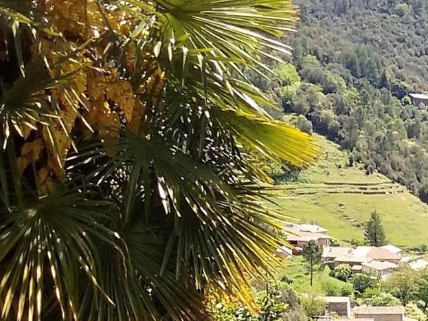 Le hameau du Gua à 1,5 km et le restaurant La Boucharade vus de la maison
