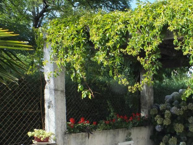 Tonnelle fleurie et ombragée