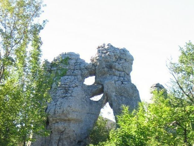 Bois de païolive avec ses roches caractéristiques (ici l'ours et le lion)