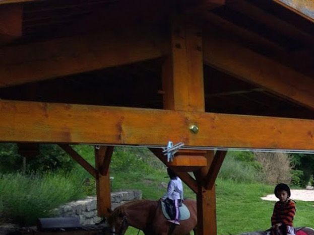 Une balade à poney offerte