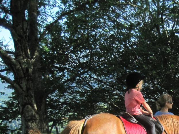 En balade avec un adulte par enfant à poney