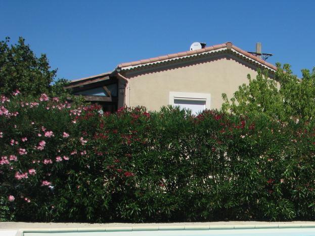 Un trottoir sur les 2 grand côtés, Au fond sur la photo, la villa du propriétaire caché par les lauriers roses