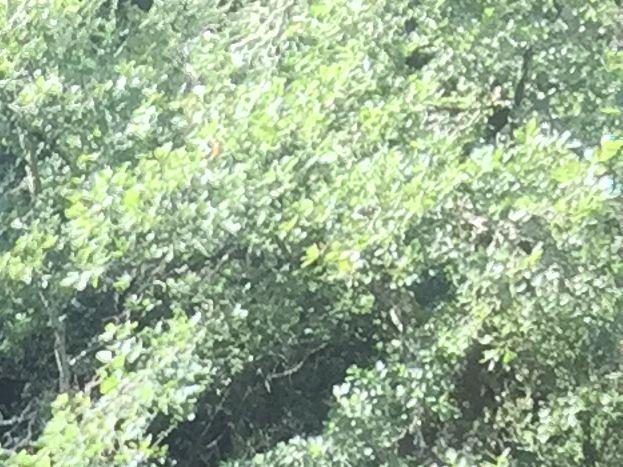 Résurgence Pléoux à 7 km   ( Beaulieu )