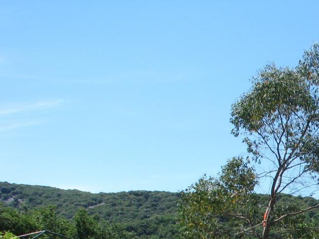 De la terrasse découverte, vue du jardin sur la droite avec une allée sous le jasmin
