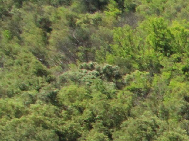 Gîte La Fenière avec vue sur la rivière, cascade