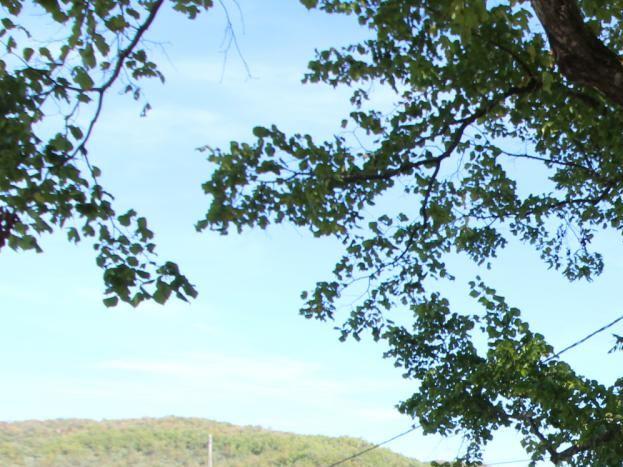la petite place  du hameau à l'ombre du tilleul