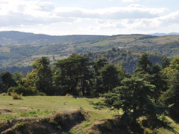 Le domaine du Duzon 13 hectares