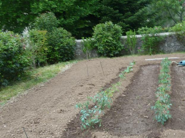 jardin début mai
