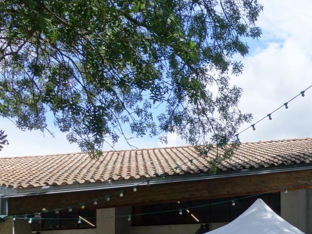 Près de nos gîtes festival d'Alba la Romaine