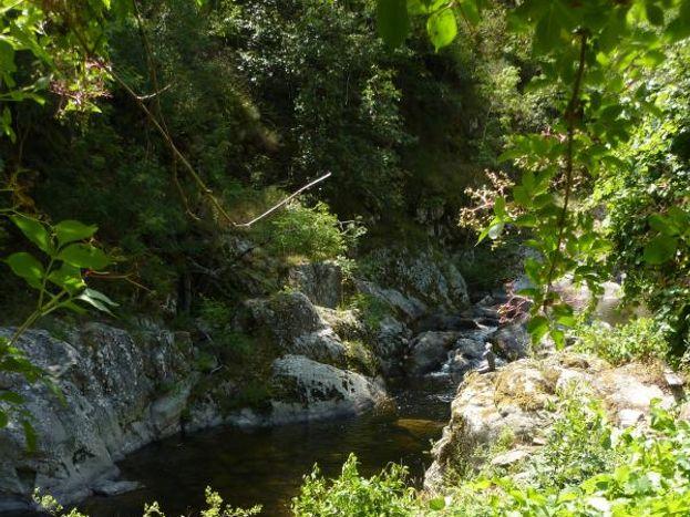 La rivière Glueyre