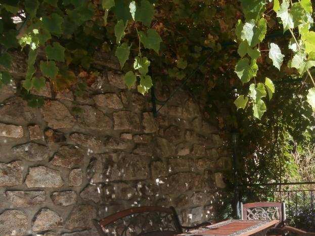 Terrasse de la Petite Cave