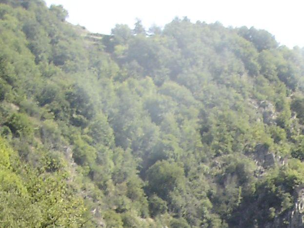Alentour la vallée du Doux le train à vapeur