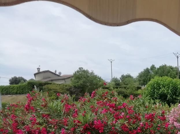la grande terrasse avec un espace fleuri.