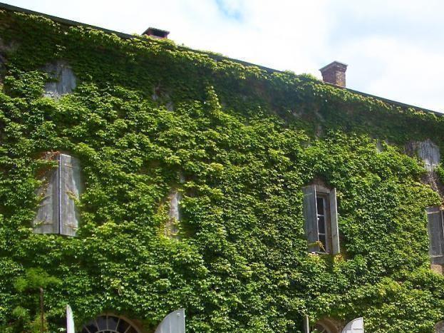 La terrasse du Domaine du Peyron