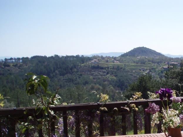 vue de la terrasse du petit déjeuner