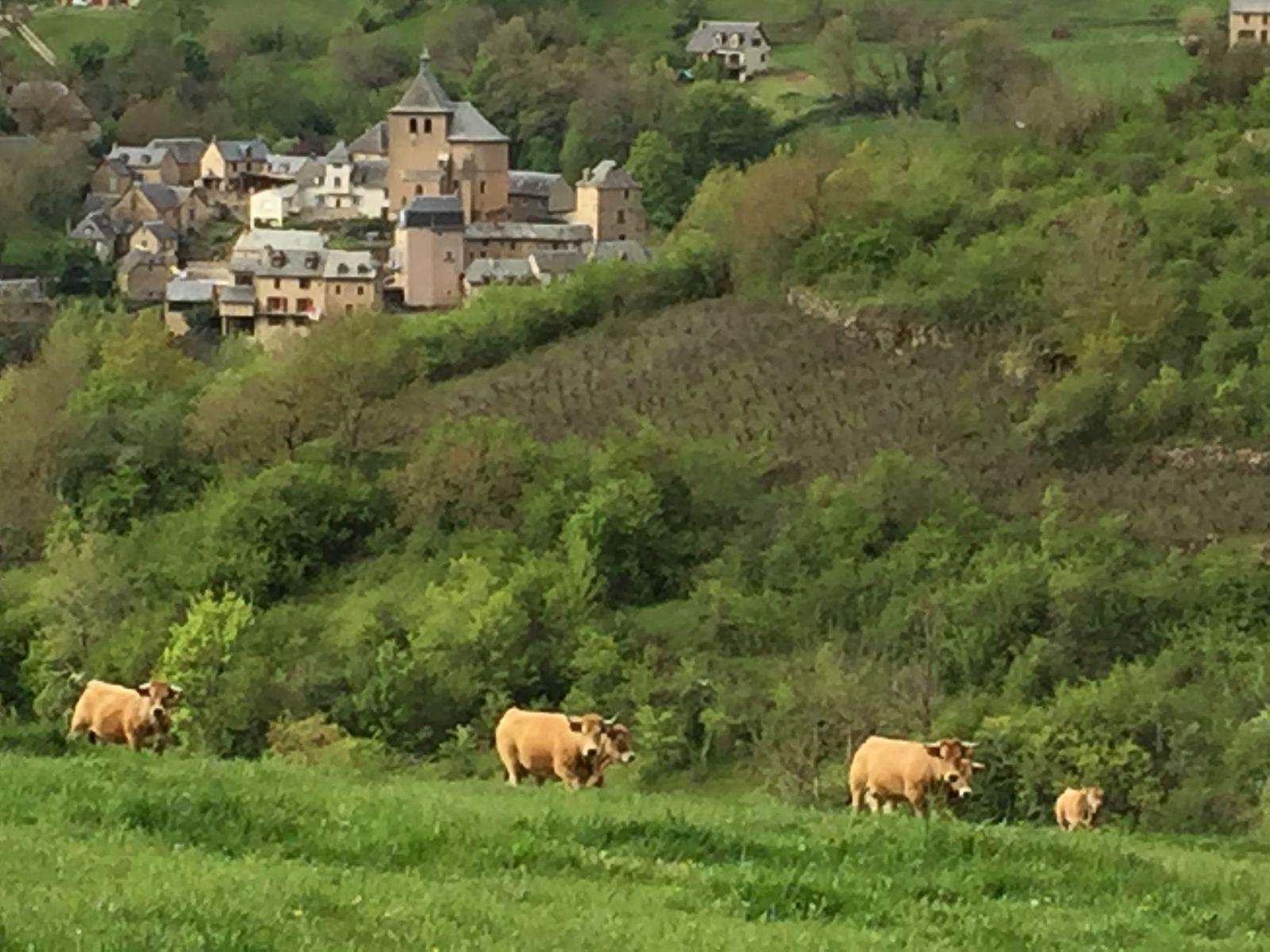 Village de Coubisou