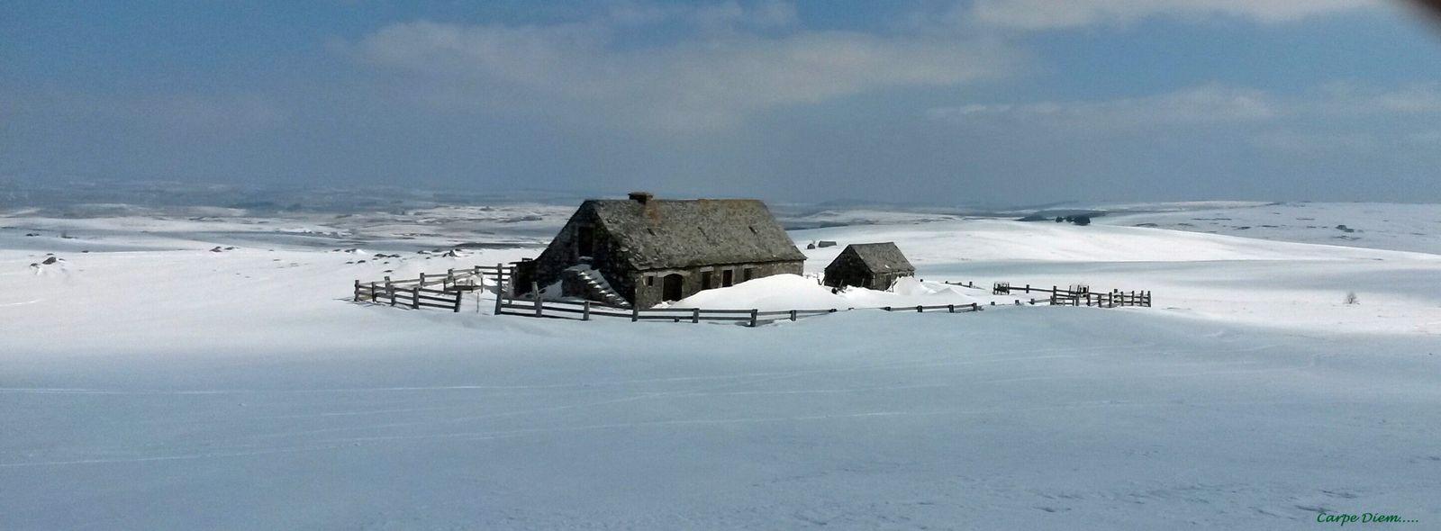 un buron sous la neige, l'immensité du plateau.