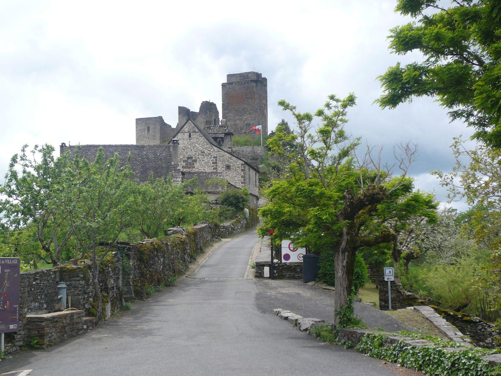 17-Château de Vallon (12ème siècle)