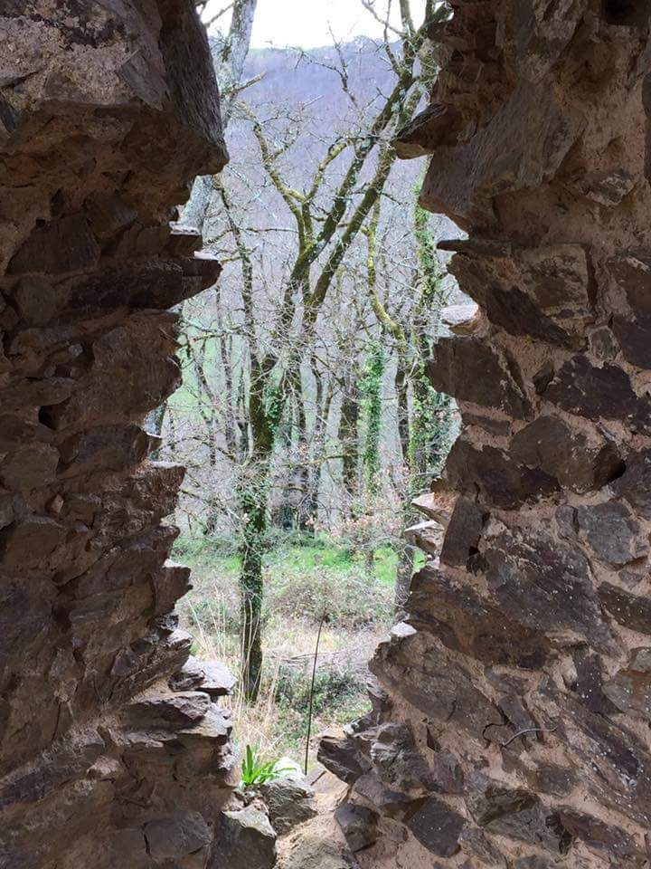 Ruines du château à Bar