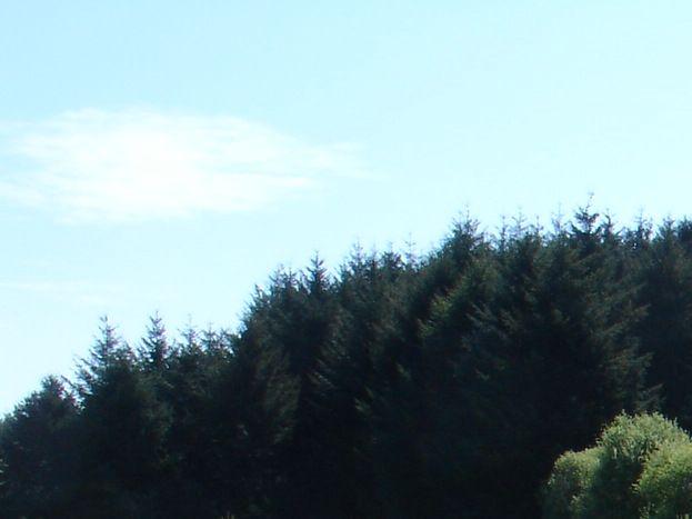 terrain initiation swin golf à 100 m à l'Est du hameau