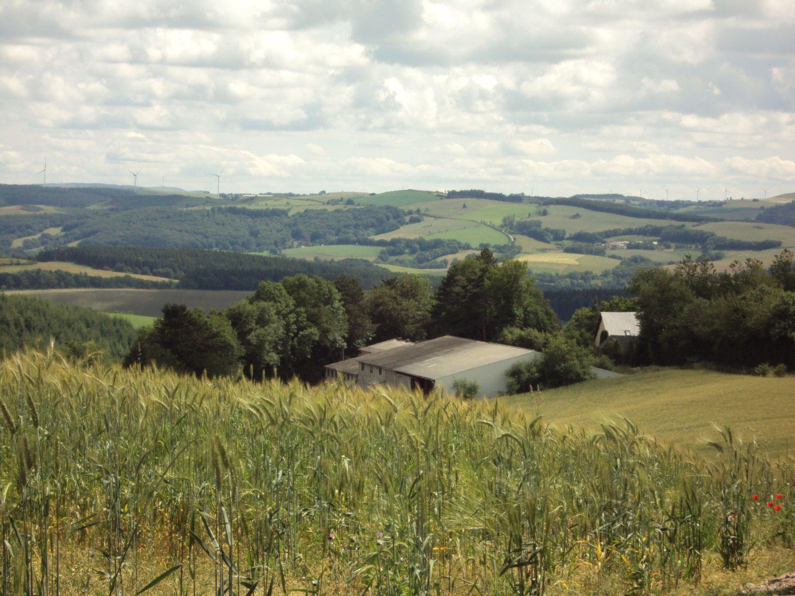 la ferme de Puech-Février, notre ferme