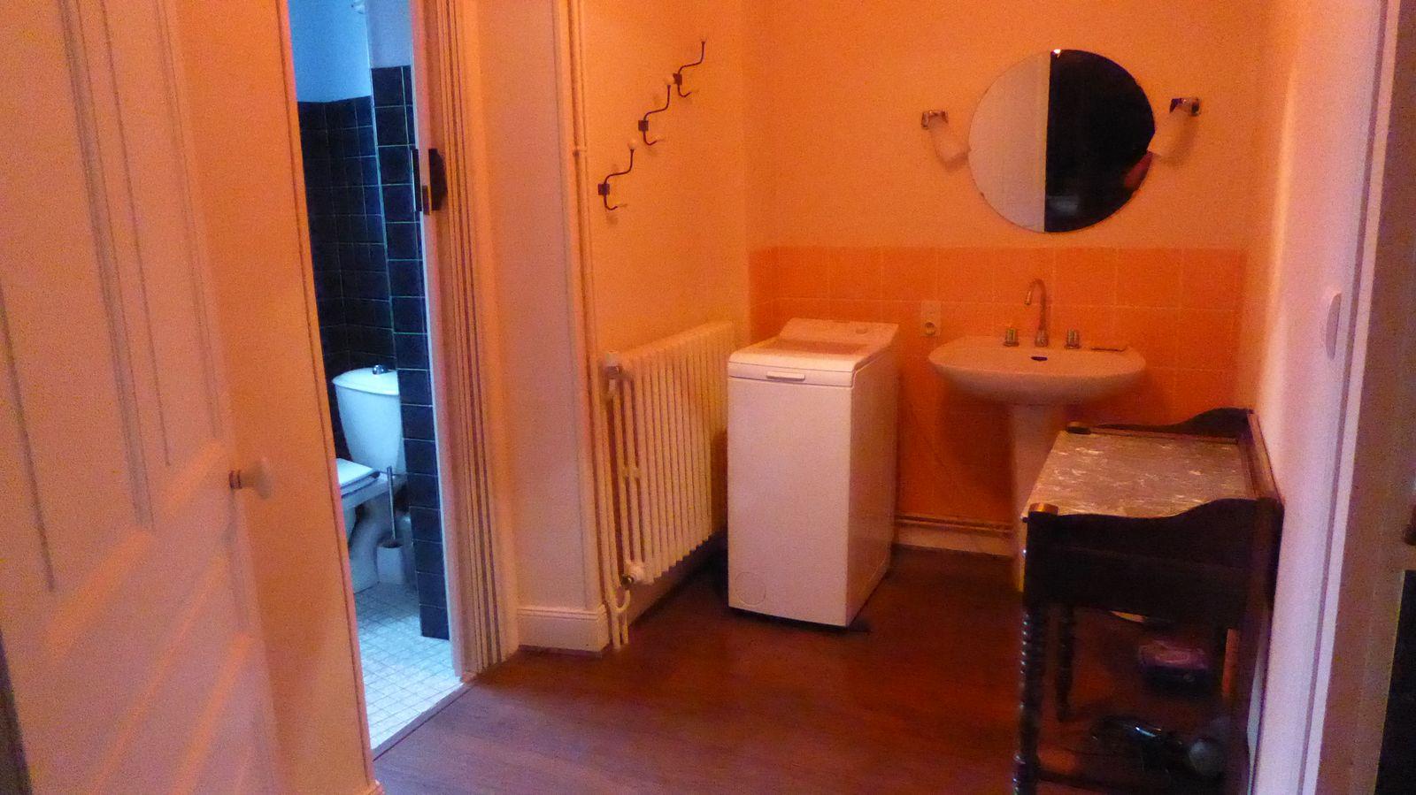 Salle d'eau RC avec baignoire/douche attenante